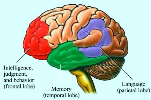 Increased memory